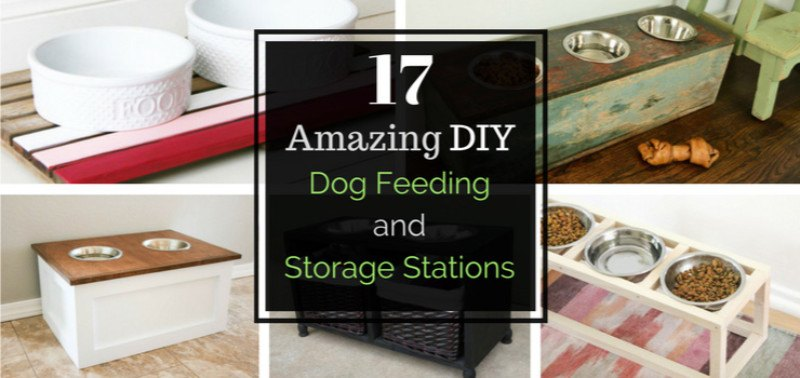 17 Amazing DIY Dog Feeding Stations and Storage | PlayBarkRun