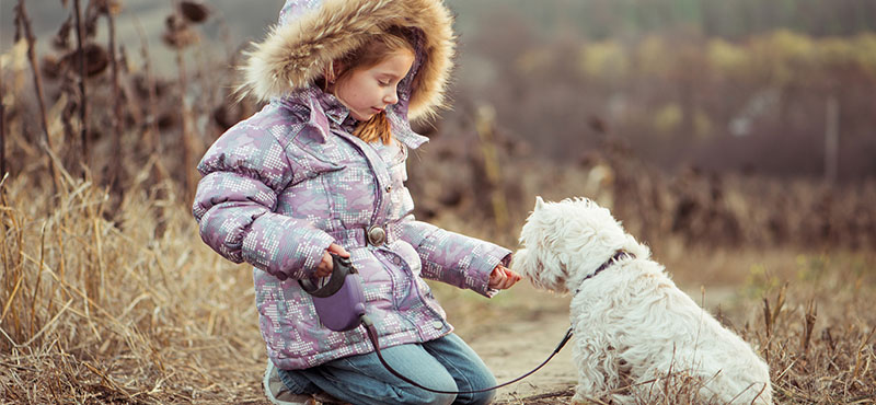 best small dogs for children