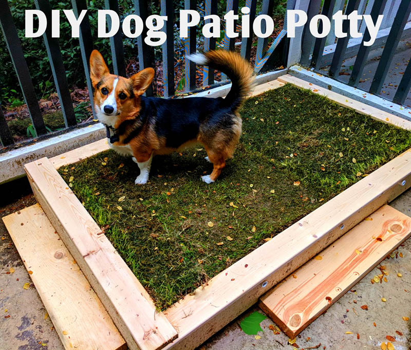 DIY Porch Potty